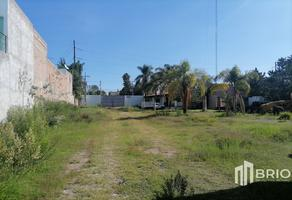 Foto de terreno habitacional en venta en  , alexa, durango, durango, 21772415 No. 01