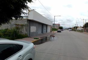 Foto de local en renta en  , alfredo baranda, valle de chalco solidaridad, méxico, 17115713 No. 01