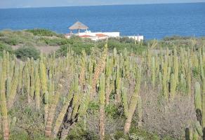 Foto de terreno comercial en venta en  , alfredo v bonfil, la paz, baja california sur, 3097722 No. 01