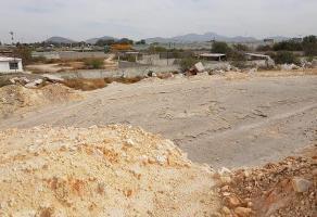 Foto de terreno habitacional en venta en allende 100, san isidro, lerdo, durango, 0 No. 01