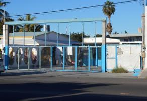 Foto de terreno habitacional en venta en allende , los olivos, la paz, baja california sur, 13783363 No. 01
