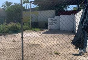 Foto de terreno comercial en renta en allende , zona central, la paz, baja california sur, 14250058 No. 01