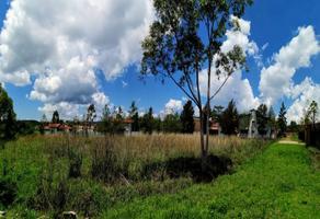 Foto de terreno habitacional en venta en alpoleo 8, tapalpa, tapalpa, jalisco, 0 No. 01