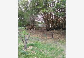 Foto de terreno habitacional en venta en alpuyeca 32, alpuyeca, xochitepec, morelos, 19197004 No. 01