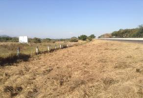 Foto de terreno comercial en venta en alpuyeca, xochitepec , alpuyeca, xochitepec, morelos, 16801720 No. 01