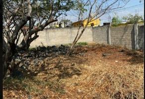Foto de terreno habitacional en venta en  , alta palmira, temixco, morelos, 0 No. 01