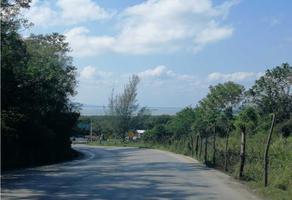Foto de casa en venta en  , altamira centro, altamira, tamaulipas, 19255507 No. 01