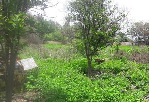 Foto de terreno habitacional en venta en aluminio , el zapote del valle, tlajomulco de zúñiga, jalisco, 14375805 No. 01