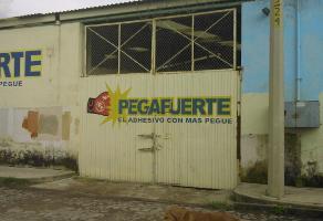 Foto de nave industrial en venta en alvaro obregon , las pintitas centro, el salto, jalisco, 5810672 No. 02