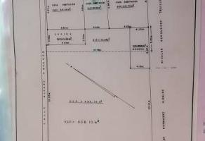 Foto de terreno habitacional en venta en alvaro obregon , palenque, balancán, tabasco, 0 No. 01