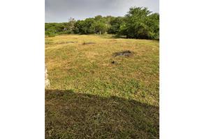 Foto de terreno habitacional en venta en  , amacuzac, amacuzac, morelos, 0 No. 01