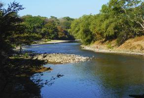 Foto de rancho en venta en  , amacuzac, amacuzac, morelos, 6451936 No. 01