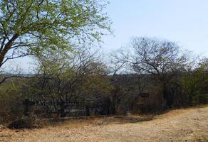 Foto de rancho en venta en . ., amacuzac, amacuzac, morelos, 6529300 No. 01