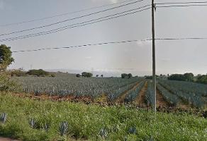 Foto de terreno habitacional en venta en  , amatitan, amatitán, jalisco, 6518535 No. 01
