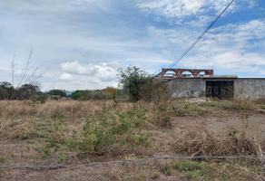 Foto de terreno habitacional en venta en amayuca , amayuca, jantetelco, morelos, 15302472 No. 01