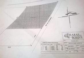 Foto de terreno habitacional en venta en , , amozoc, puebla , las cruces, amozoc, puebla, 8877961 No. 01