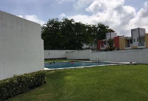 Foto de casa en renta en  , ampliación benito juárez, emiliano zapata, morelos, 10963565 No. 02