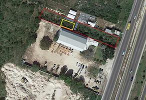 Foto de terreno habitacional en renta en  , francisco de montejo, mérida, yucatán, 9153903 No. 01