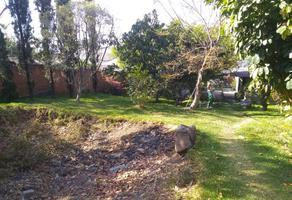 Foto de terreno habitacional en venta en  , ampliación hermenegildo galeana, cuautla, morelos, 0 No. 01