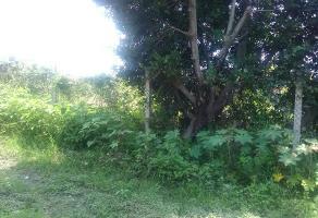 Foto de terreno comercial en venta en  , centro, cuautla, morelos, 8575254 No. 01