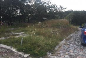 Foto de terreno habitacional en venta en  , ampliación san lorenzo, amozoc, puebla, 0 No. 01