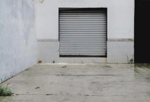 Foto de local en renta en  , ampliación unidad nacional, ciudad madero, tamaulipas, 16678249 No. 01