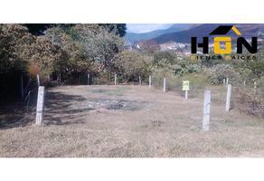 Foto de terreno habitacional en venta en  , ampliación volcanes, oaxaca de juárez, oaxaca, 0 No. 01