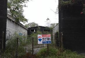 Foto de terreno habitacional en renta en  , anáhuac 1, el mante, tamaulipas, 13708516 No. 01