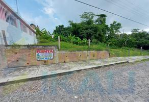 Foto de terreno habitacional en renta en  , anáhuac, tuxpan, veracruz de ignacio de la llave, 8398684 No. 01