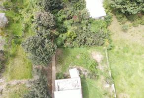 Foto de terreno habitacional en venta en analco , analco, tlatlauquitepec, puebla, 0 No. 01