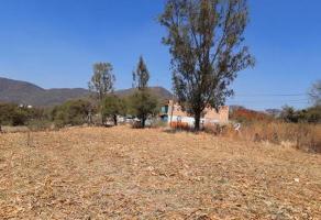 Foto de terreno comercial en venta en antigua carretera guadalajara oriente 1553, chapala centro, chapala, jalisco, 12366570 No. 01