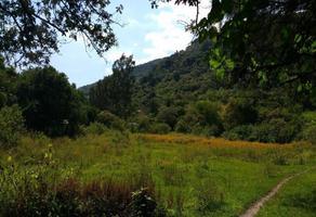 Foto de terreno industrial en venta en antiguo camino a jalmolonga 43, malinalco, malinalco, méxico, 16765035 No. 01
