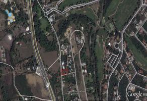 Foto de terreno comercial en renta en antiguo camino a santiago , el ranchito, santiago, nuevo león, 16791239 No. 01