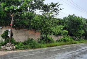 Foto de terreno habitacional en venta en antonio neyra garcia 3-02 , colegios, benito juárez, quintana roo, 16979144 No. 01