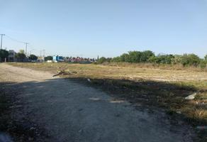 Foto de terreno habitacional en venta en  , apodaca centro, apodaca, nuevo león, 12447043 No. 01