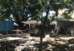 Foto de terreno habitacional en venta en  , árbol grande, ciudad madero, tamaulipas, 7795475 No. 01