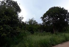 Foto de terreno habitacional en venta en arboleda kanasin whi267185, kanasin, kanasín, yucatán, 19305985 No. 01