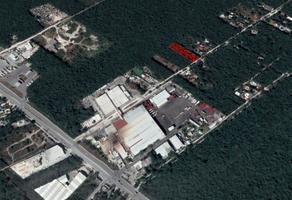Foto de terreno habitacional en venta en  , arboledas, benito juárez, quintana roo, 16704468 No. 01