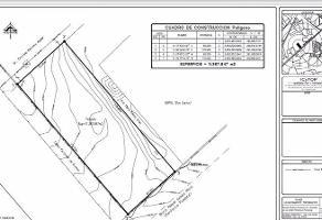 Foto de terreno habitacional en renta en  , arboledas jacarandas, san luis potosí, san luis potosí, 10639889 No. 01