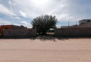Foto de terreno habitacional en venta en . , las minitas, hermosillo, sonora, 20587391 No. 01