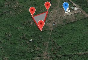 Foto de terreno comercial en venta en arco vial norte , dzitya, mérida, yucatán, 13854674 No. 01