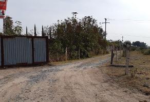 Foto de terreno industrial en venta en areneros , san juan de ocotan, zapopan, jalisco, 0 No. 01