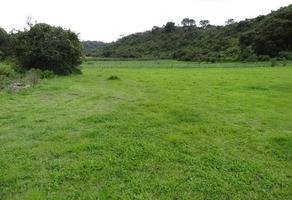 Foto de terreno habitacional en venta en  , arocutin, erongarícuaro, michoacán de ocampo, 14214392 No. 01