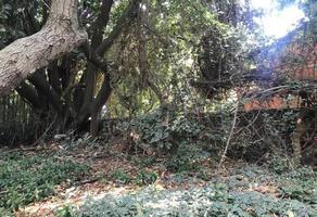Foto de terreno habitacional en venta en arrastradero, ocotepec , ocotepec, cuernavaca, morelos, 0 No. 01