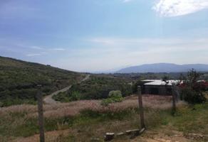 Foto de terreno habitacional en venta en arroyo de trigo 0, san felipe del agua 1, oaxaca de juárez, oaxaca, 11119479 No. 01