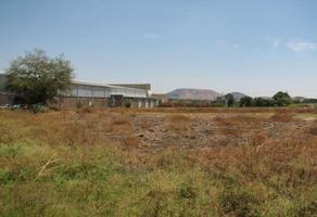 Foto de terreno industrial en venta en  , arroyos xochitepec, xochitepec, morelos, 9511085 No. 01