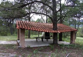 Foto de terreno habitacional en venta en  , arteaga centro, arteaga, coahuila de zaragoza, 19000060 No. 01