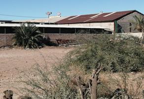 Foto de terreno habitacional en venta en arturo bernal , ex ejido coahuila, mexicali, baja california, 14338064 No. 01
