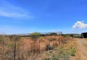 Foto de terreno habitacional en venta en  , arvento, tlajomulco de zúñiga, jalisco, 7635243 No. 01
