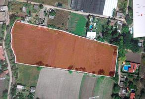 Foto de terreno habitacional en venta en atlacholoaya , atlacholoaya, xochitepec, morelos, 0 No. 01